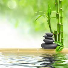 espace zen yoga décoration